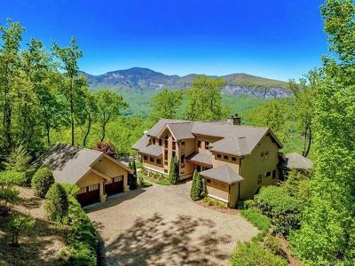 Lake Lure Single Family Home For Sale: 170 Clear Creek Trail