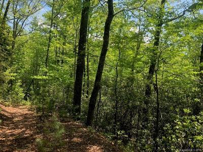 Brevard Residential Lots & Land For Sale: Laurel Thicket Lane #73R