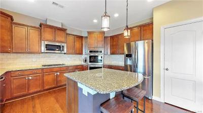 Davidson Single Family Home For Sale: 2065 Topaz Plaza