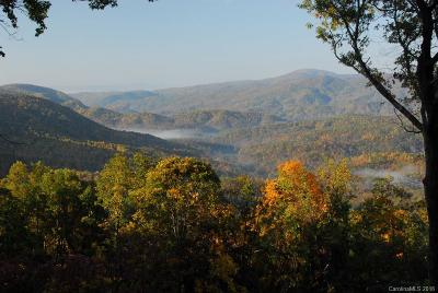 Black Mountain Residential Lots & Land For Sale: 148 High Cliffs Trail #Lot 12B