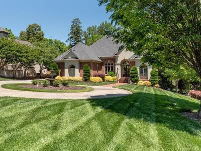 Ballantyne Country Club Single Family Home For Sale: 10908 Ballantyne Crossing Avenue