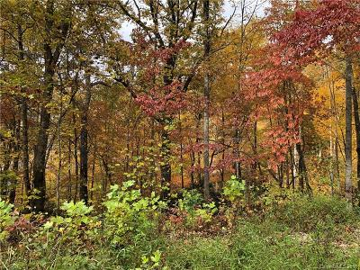 Candler Residential Lots & Land For Sale: 22 Graulich Lane #6