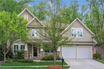 Cornelius Single Family Home For Sale: 17139 Lake Path Drive