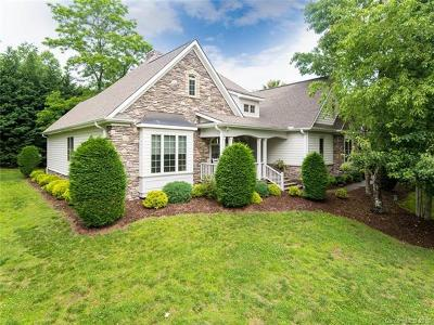 Hendersonville Single Family Home For Sale: 33 Willow Place Circle