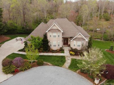 Hendersonville Single Family Home For Sale: 969 Rickel Drive