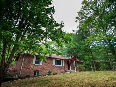 Hendersonville Single Family Home For Sale: 219 Trappers Trail