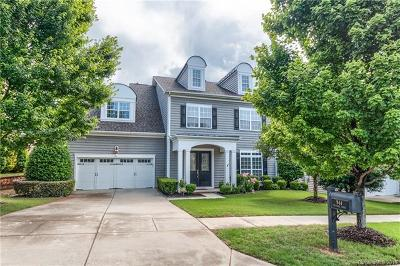 Fort Mill Single Family Home For Sale: 944 Treasure Court