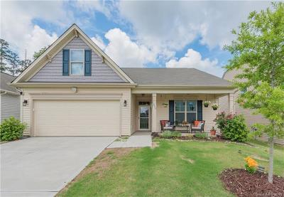 Charlotte Single Family Home For Sale: 1235 Guadalupe Lane