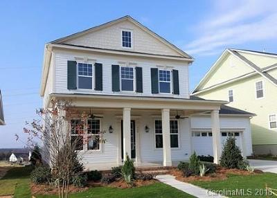 Fort Mill Single Family Home For Sale: 1522 Half Pint Loop #95