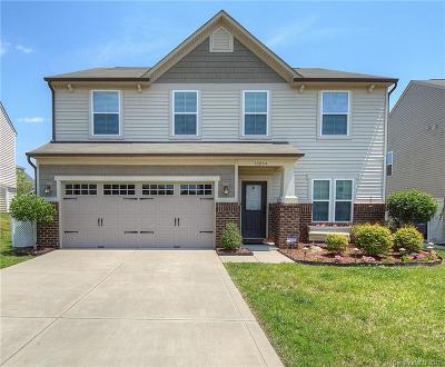 Davidson Single Family Home Under Contract-Show: 10954 Tailwater Street