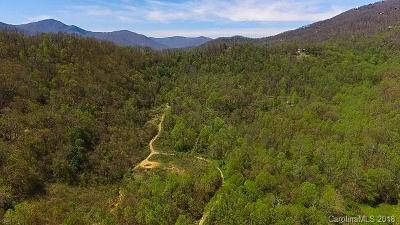 Buncombe County, Haywood County, Henderson County, Madison County Residential Lots & Land For Sale: 92 Herbert Trail