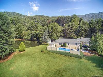 Waynesville Single Family Home For Sale: 48 Little Mountain Road
