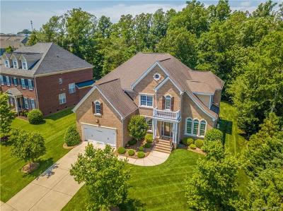 Concord Single Family Home For Sale: 10618 Skipping Stone Lane NW