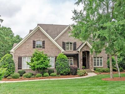 Waxhaw, Weddington Single Family Home For Sale: 1217 Hadley Park Lane