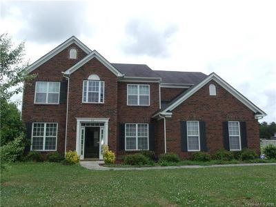 Rock Hill Single Family Home For Sale: 119 Woodside Village Drive