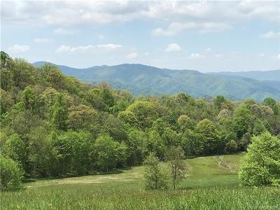 Hot Springs NC Residential Lots & Land For Sale: $1,399,111