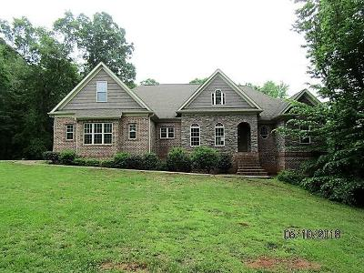 Statesville Single Family Home For Sale: 386 Wood Bridge Road #1-2