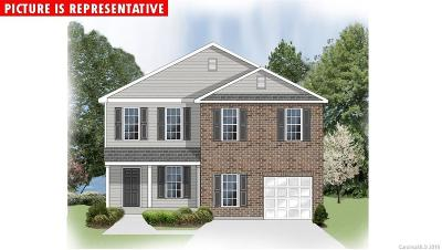 Charlotte Single Family Home For Sale: 6627 Broad Valley Court #LOT 70