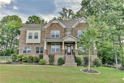 Waxhaw Single Family Home For Sale: 4905 Congaree Drive #671