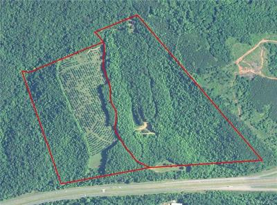 Rutherfordton Residential Lots & Land For Sale: Zion Road