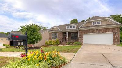 Rock Hill Single Family Home For Sale: 5161 Norway Lane