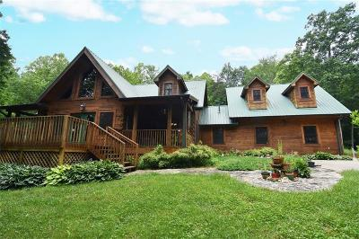 Alexander County, Ashe County, Avery County, Burke County, Caldwell County, Watauga County Single Family Home For Sale: 4705 All Healing Springs Road