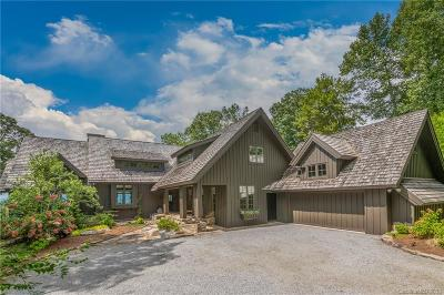 Hendersonville Single Family Home For Sale: 55 Armour Court
