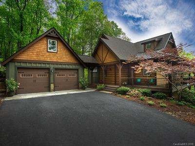 Hendersonville Single Family Home For Sale: 359 Thunder Mountain Road