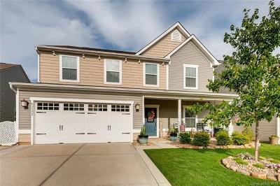 Cabarrus County Single Family Home For Sale: 3592 Catherine Creek Place