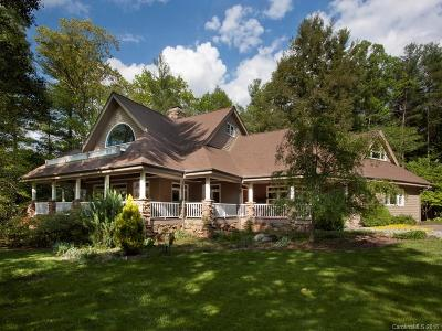 Asheville Single Family Home For Sale: 9 Cedar Chine