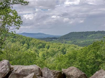 Hendersonville Residential Lots & Land For Sale: 9999 Winterview Trail