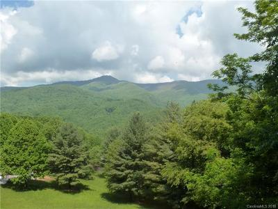 Waynesville Residential Lots & Land For Sale: Balsam Meadows Road #Lot 9
