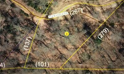 Residential Lots & Land For Sale: 122 Rock Ledge Road