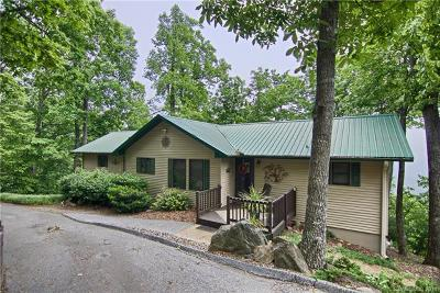 Bat Cave, Black Mountain, Chimney Rock, Lake Lure, Rutherfordton, Union Mills, Mill Spring, Columbus, Tryon, Saluda Single Family Home For Sale: 3041 Skyuka Mountain Road