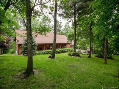Saluda Single Family Home For Sale: 328 Sean Franklin Drive