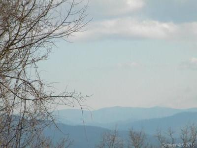 Waynesville Residential Lots & Land For Sale: 100 Early Frost Point #100