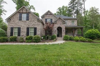 Mint Hill Single Family Home For Sale: 9314 Scorpio Lane