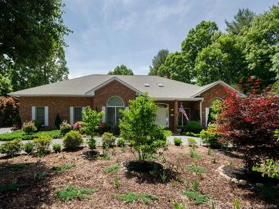 Hendersonville Single Family Home For Sale: 180 Sweetwater Hills Drive