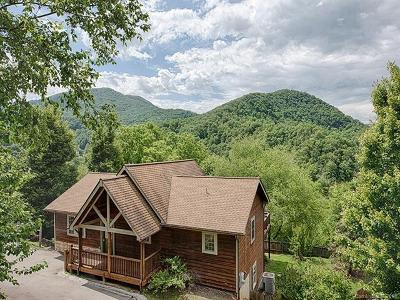 Waynesville Single Family Home For Sale: 21 Surveyors Point