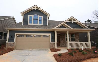 Tega Cay Single Family Home For Sale: 1525 Liberty Row Drive #CAD 88