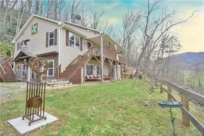 Leicester Single Family Home For Sale: 792 S Turkey Creek Road