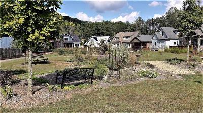 Asheville Residential Lots & Land For Sale: 30 Destination Drive #Lot V-8