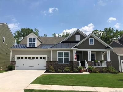 Tega Cay Single Family Home For Sale: 5136 Waterloo Drive
