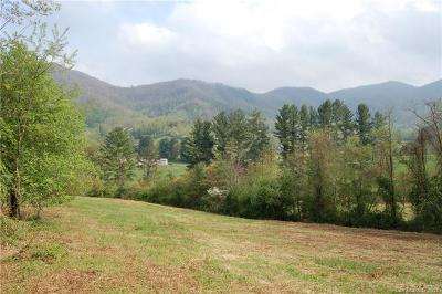 Buncombe County, Haywood County, Henderson County, Madison County Residential Lots & Land For Sale: 4150 Dutch Cove Road