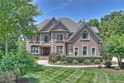 Ballantyne Country Club Single Family Home For Sale: 10916 Robinson Rock Court