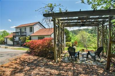 Asheville Single Family Home For Sale: 202 New Stock Road