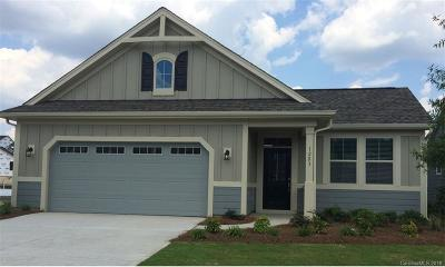 Tega Cay Single Family Home For Sale: 1283 Independence Street #CAD 85