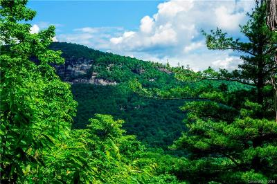 Residential Lots & Land For Sale: Lt 97 Mills Creek Point #97