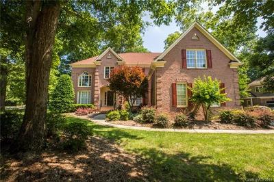 Charlotte Single Family Home For Sale: 12690 Overlook Mountain Drive