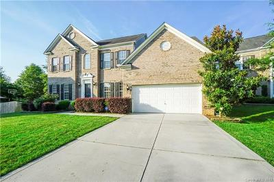 Fort Mill Single Family Home For Sale: 435 Glandon Court